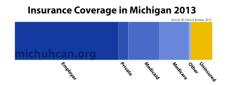 Data: Michigan Insurance Types 2013