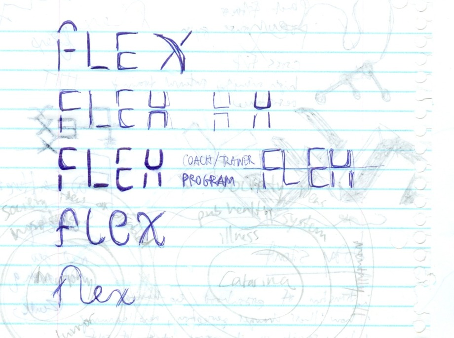 flex_program_doodles